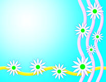 Spring Daisy Background Royalty Free Stock Image