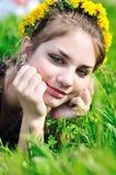 Spring dandelion face Stock Image