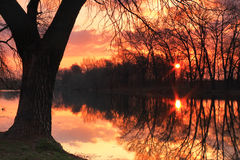 Spring Dawn. On a small lake Royalty Free Stock Image