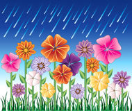 Spring Day 2. Vector illustration of a Spring Day 2 with Rain and Flower Garden with grass