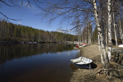 Spring day with blue sky and calm water on. `Ume` river with some boats on the shore and birches in foreground, picture from the North of Sweden stock images