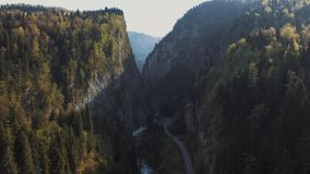 A natural landscape, beautiful view of the mountains, coniferous trees , bridge. A spring day in the mountains, coniferous trees are on either side of the bridge stock video footage