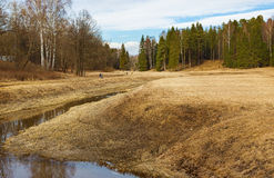 Spring day at the Park of Pavlovsk. Royalty Free Stock Photography