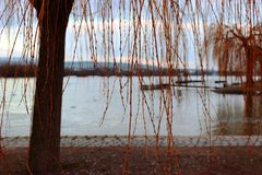 Spring day at the river royalty free stock image