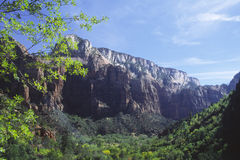 Spring day in Zion National Park, Utah Stock Photography