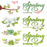 Spring decor set.Green Leaves,branches,flowers. Vector Spring composition.Green Leaves, branches wreath,word.Seasonal background, design template. Description stock illustration