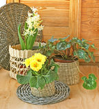 Spring decoration of balcony Stock Images