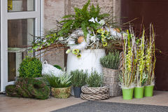 Spring decoration- flower shop. Green spring decoration with flowers Royalty Free Stock Photos
