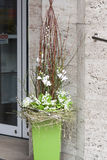 Spring decoration- flower shop. Green spring decoration with flowers Stock Images