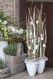 Spring decoration- flower shop. Green spring decoration with flowers. white tulips Royalty Free Stock Image