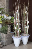 Spring decoration- flower shop. Green spring decoration with flowers. white tulpis Royalty Free Stock Image