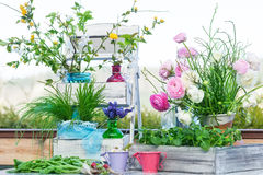 Spring decoration on  the terrace Stock Photos