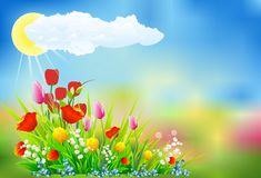 Spring decoration with tulips, Stock Photo