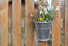 Spring Decorations on a Picket Fence Stock Image