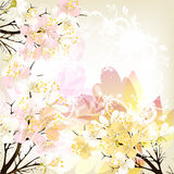 Cute floral spring  background with pink fresh flowers Stock Photography
