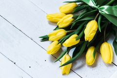 Spring decorative composition. Bouquet of yellow tulips tied by green ribbon. Close up portrait on white wooden background.  Royalty Free Stock Photography