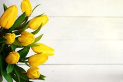 Spring decorative composition. Bouquet of yellow tulips tied by green ribbon. Close up portrait on white wooden background.  Royalty Free Stock Image