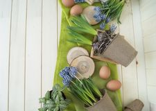 Spring decorative composition. Flowers in a basket and pots of hyacinth, muscari, narcissus. Wooden background. Cozy decor of the Easter. Easter eggs. Colors Stock Photography