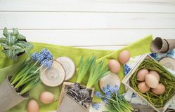 Spring decorative composition. Flowers in a basket and pots of hyacinth, muscari, narcissus. Wooden background. Cozy decor of the Easter. Easter eggs. Colors Stock Images