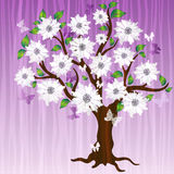 Spring decorative tree Stock Image
