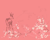 Spring deer background Stock Photography