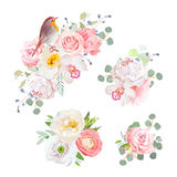 Spring delicate bouquets and cute robin bird vector design objects. Peachy and pink roses, peony, carnation, orchid, white poppy, ranunculus flowers Stock Photo