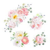 Spring delicate bouquets vector design objects. Peachy and pink roses, peony, carnation, orchid, white poppy, ranunculus flowers, eucalyptus. All elements are Stock Photos