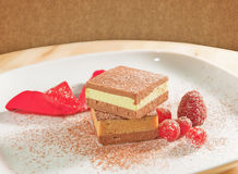 Spring delicious dessert Stock Image