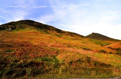 Spring on the Derwent Fells. Track to Rowling End and Causey Pike Stock Photo