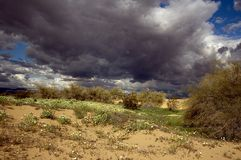 Spring Desert Storm. Dark Clouds Almost Touch the Sand Dunes of a Desert Floor Stock Photo