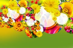 Spring Design Stock Photo