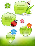 Spring design elements Stock Images