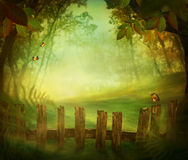 Spring design - Forest with wood fence Stock Photos