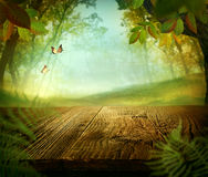 Spring design - Forest with wood table. And meadow in the back Royalty Free Stock Images