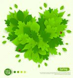 Spring design with green leaves formed heart Stock Photos