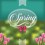 Spring design with translucent badge and tulips Stock Photos