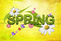 Spring design wallpaper Royalty Free Stock Images