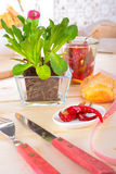 Spring Dining Table Stock Photography