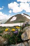 Spring in Dombai. Karachai,Caucasus,Russia Stock Photo