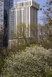 Spring in Downtown Stock Photos