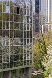 Spring in Downtown Stock Image