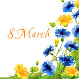 Spring draw flowers for the eighth March. Design Stock Photo