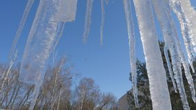 Spring drops, icicles stock video footage