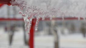 Spring drops, icicles. Icicles hang from the roof and slowly melt. Drops of water falling down. Drops of water against a background of blurry deciduous trees stock video