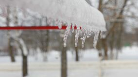 Spring drops, icicles. Icicles hang from the roof and slowly melt. Drops of water falling down. Drops of water against a background of blurry deciduous trees stock footage