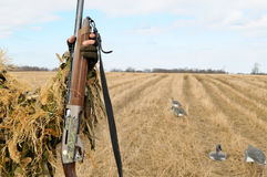 Spring ducks hunting. Gun in hands of the hunter and models of ducks in the field Royalty Free Stock Photography