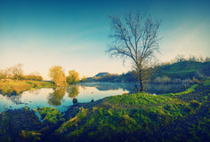 Spring early morning on a lake_vintage_1 Stock Photography