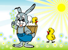 Spring, easter. The rabbit with a Easter basket Stock Photos
