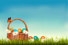Spring Easter background. Basket with Easter eggs. In grass with flowers. Vector Royalty Free Stock Images