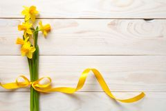 Spring, Easter Background with Daffodil Flowers Stock Photos
